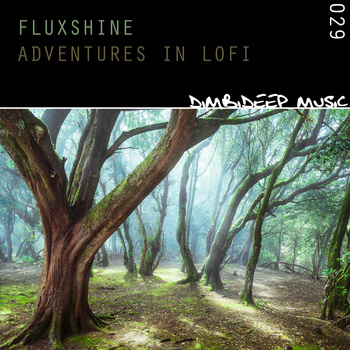 RELEASED: Fluxshine – Adventures in LoFi